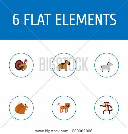 Icons flat style horse, leopard, donkey and other vector elements. Set of animal icons flat style symbols also includes horse, gorilla, puma objects.