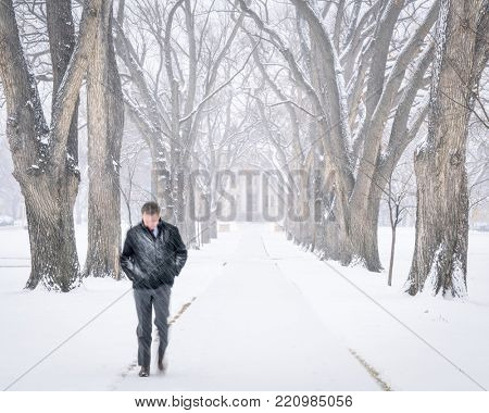 Fort Collins, CO, USA - January 4, 2017: A lonely young man walking through an alley of old elm trees in a blizzard