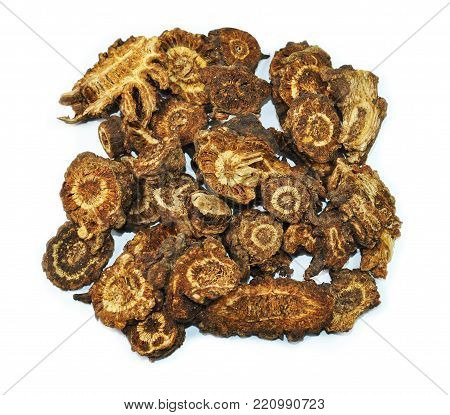 Rhizoma Notopterygii, chinese herbal medicine isolated. Qiang Huo