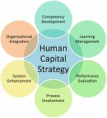Human capital business diagram management strategy concept chart vector illustration poster