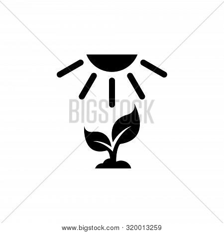 Crop Growth, Young Sprout Under Sun. Flat Vector Icon Illustration. Simple Black Symbol On White Bac