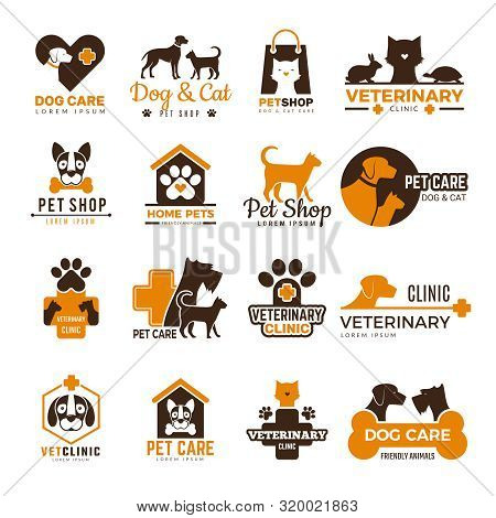 Vet Clinic Logo. Pets Shop Cats Dogs Domestic Animals Protection Friendly Funny Symbols Vector Colle