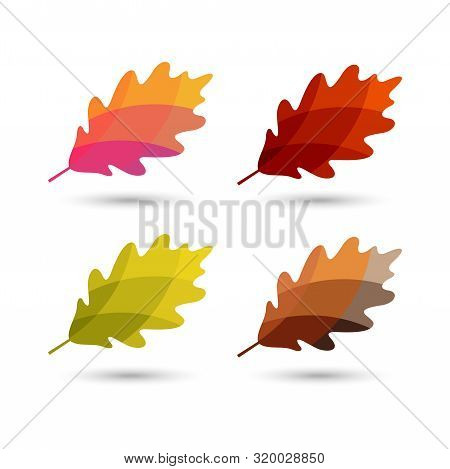 Autumn Leaves Vector Logo With Colorful Styles,oak Leaf With Autumn Color Schemes. Autumn Logo, Autu