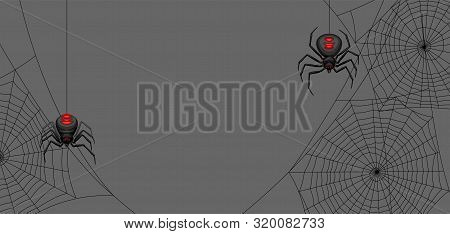 Background With Black Widow Spiders. Banner For Halloween Holiday.