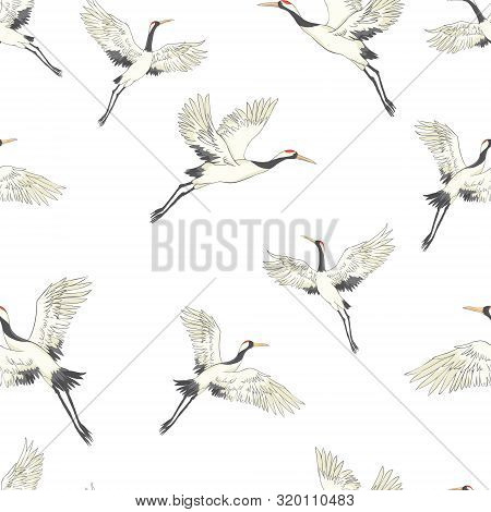 Seamless Pattern, Background With Tropical Birds. White Heron, Cockatoo Parrot. Colored And Outline