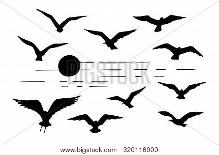 Set Of Seagulls Silhouettes Black Flying Birds And Sun Silhouette Isolated On White Background