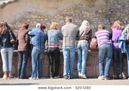People Look At Rock Wall In Zoo