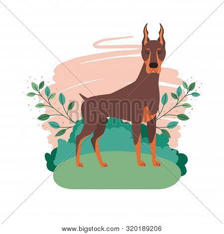 Cute Doberman Dog With Background Landscape Vector Illustration Design