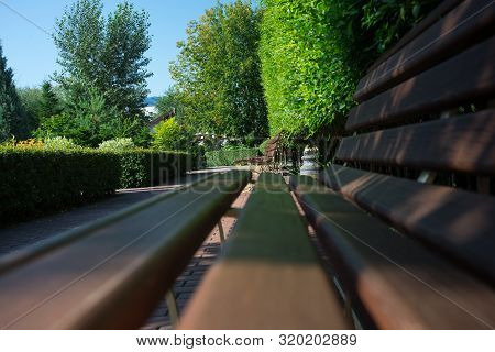 Empty Park Wooden Bench Closeup View. Wood Exterior Material. Blank Bench In A Shady Area Of The Gar