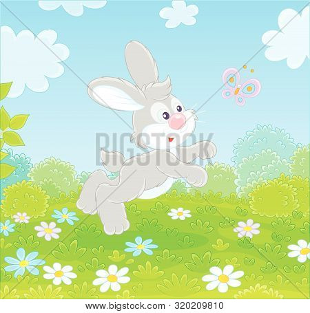 Little Grey Long-eared Rabbit Jumping And Playing With A Small Colorful Butterfly On Green Grass Of