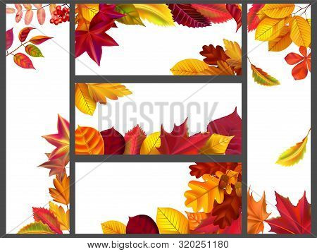Realistic Autumn Leaves Banners. Yellow Garden Leafage, Flying Leaf And Fall Season Banner Bundle. A