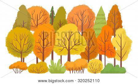 Autumn Forest Trees. Autumnal Garden, Yellow Tree Abstract. October Golden Leaves Season, September