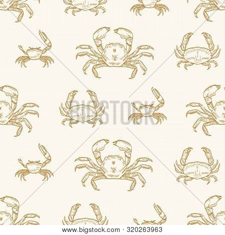 Sea crabs vector seamless pattern. Underwater animals species, marine crustaceans on pastel background. Delicacy seafood. Ocean creature with pincers wrapping paper, wallpaper textile design. poster