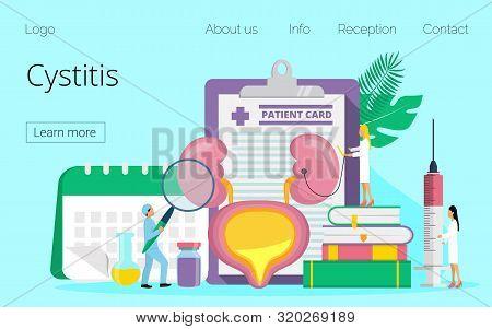 Oncept Of Cystitis, Urolithiasis, Nephroptosis, Renal Failure.