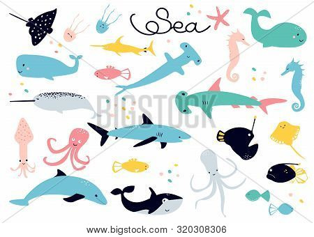 Scandinavian Cartoon Collection Of Vector Drawings On The Theme Of Sea Animals  - Stingray; Jellyfis