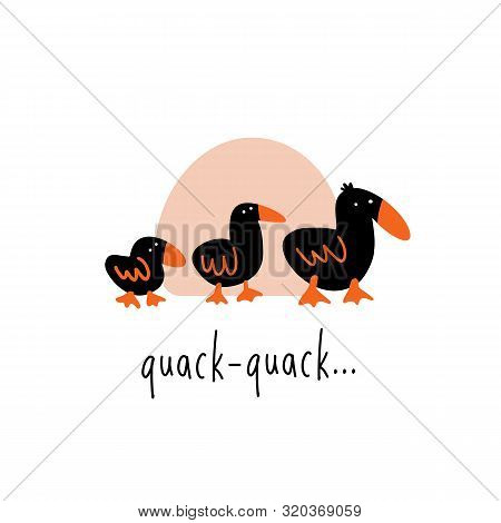 Funny Vector Illustration Of Three Walking Ducks. Phrase Quack Quack.