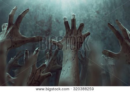 Bloody Zombie Hands Rising Up , Halooween Theme