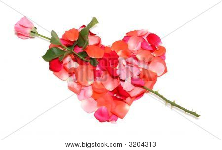 Love Heart From Rose Petals