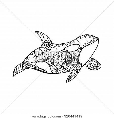 Vector Illustration Of Hand Drawn Patterned Killer Whale. Doodle Orca. Coloring Page Book Anti Stres