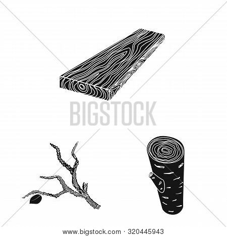 Isolated Object Of Hardwood And Construction Icon. Collection Of Hardwood And Wood Vector Icon For S