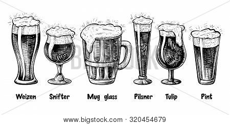 Vector Beer Glass Types, Vintage Engraving. Foamy Beer In Different Glasses: Weizen, Pilsner, Tulip,