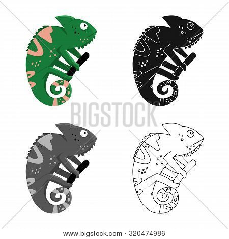 Isolated Object Of Green And Lizard Logo. Collection Of Green And Quirky Vector Icon For Stock.