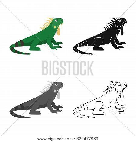 Isolated Object Of Iguana And Lizard Logo. Set Of Iguana And Colorful Stock Vector Illustration.