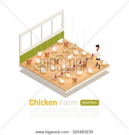 Modern Chicken Poultry Farm Facility Isometric Element With Automated Watering Feeding And Eggs Coll