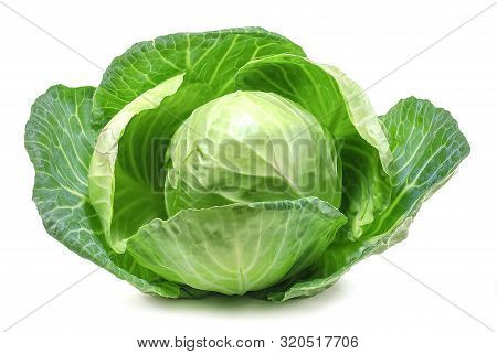 Fresh Green Cabbage Isolated On White Background