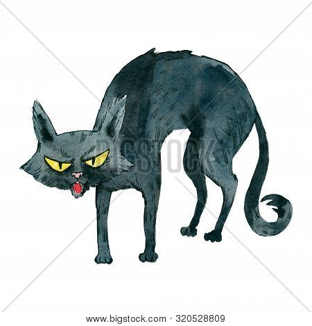 Meowing Black Cat With A Curved Back