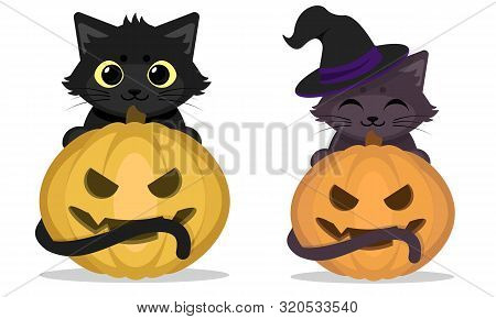 Vector Illustration Of Cute Halloween Cats And Scary Pimpkins. Halloween Elements For Greeting Card,