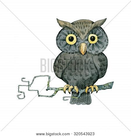 Fairytale Owl With Big Eyes Sits On A Dry Branch