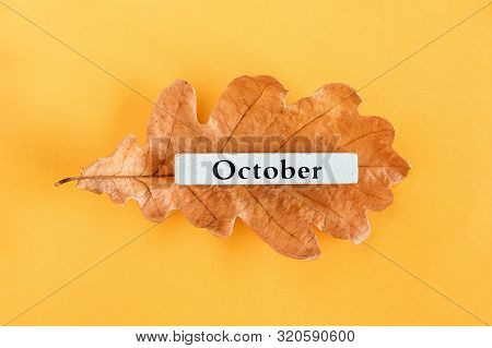 Calendar Month October On Autumn Oak Leaf On Yellow Background. Top View Copy Space Flat Lay Minimal