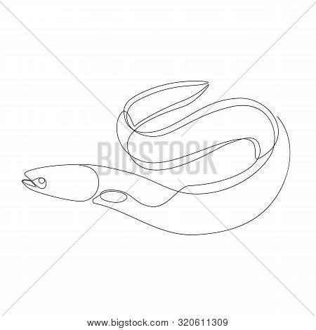 Eel Illustration Drawn By One Line. Minimalist Style Vector Illustration