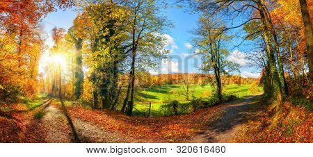 Gorgeous Panoramic Landscape Showing A Meadow And A Path Leading Into A Forest, With Autumn Colors,