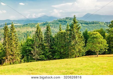 Meadow In The Ukrainian Carpathians With Silhouettes Of Hoverla And Petros In The Background.