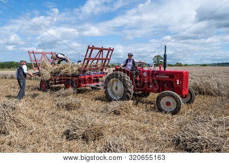 Haselbury Plucknett.somerset.united Kingdom.august 18th 2019.people Are Loading Bundles Of Wheat Str