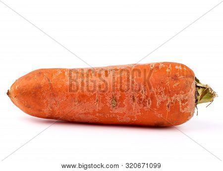 Large Unwashed Whole Orange Carrots Isolated On A White Background, Close Up