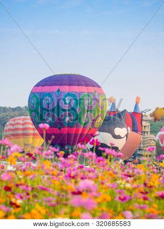 Singha Park Chiangrai International Balloon Fiesta 2019 In Singha Park, Chiang Rai, Thailand.