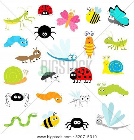 Insect Icon Set. Mantis Lady Bug Mosquito Butterfly Bee Grasshopper Beetle Caterpillar Spider Cockro