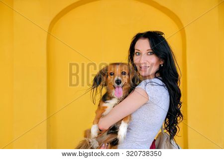 Portrait Of Brunette Woman And Her Dog On Background Of Bright Yellow Wall. Funny Spaniel Mutt