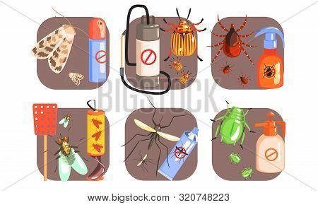 Pest Control Icons Set, Extermination Of Harmful Insects, Moth, Tick, Colorado, Potato, Beetle, Fly,