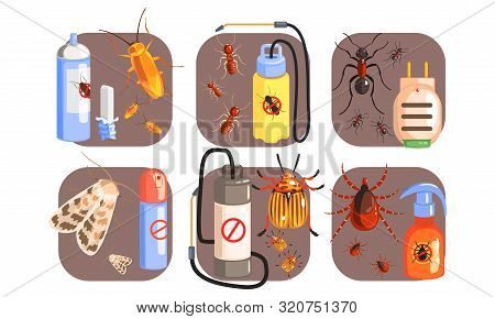Pest Control Icons Set, Extermination Of Harmful Insects, Tick, Cockroach, Moth, Ant, Termite Vector
