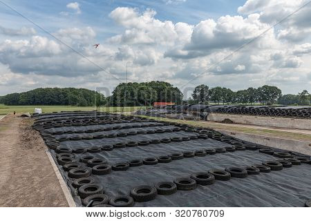 Dutch Farmland With Grass Silage Covered With Black Agricultural Plastic Foil And Car Tires