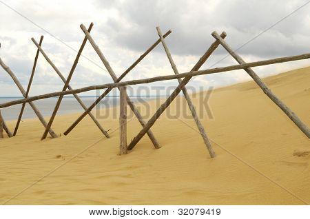 Wind & Curonian Dune