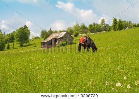 Peaceful Mountain Scenery