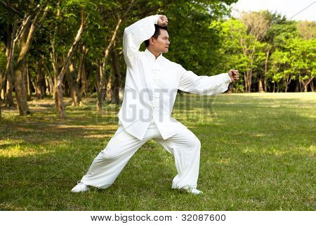 Man And Kung Fu Position