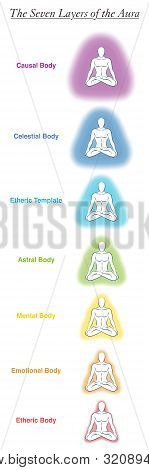 Seven Aura Bodies Chart Of A Meditating Yoga Man. Labeled Chart - Etheric, Emotional, Mental, Astral