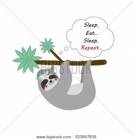 Cute Funny Sloth Hanging On Tree Branch Isolated On White Background. Tshirt Design, Print, Sleep, E