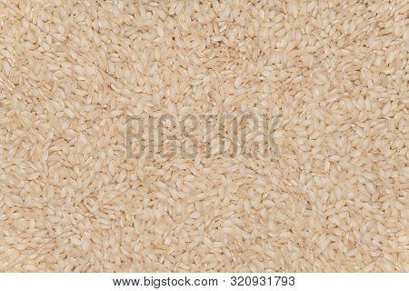 Raw Short Grains Italian Rice Background Texture